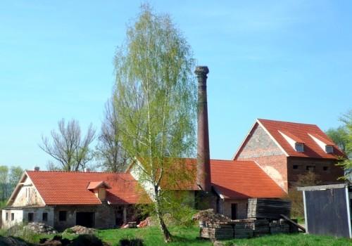 Jaro 2011