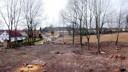 Pohled do budoucího lesoparku