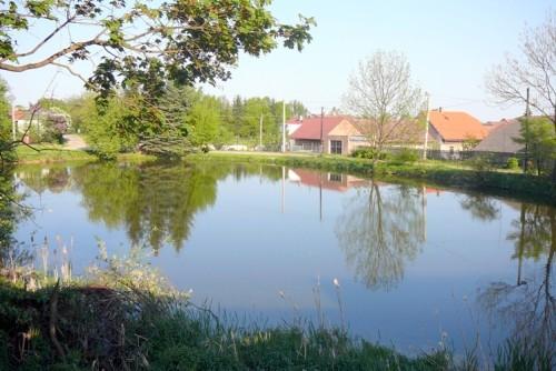 """Zámecký rybník """"Žiďák"""""""
